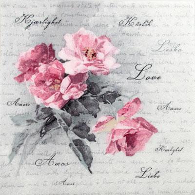 Salveta Love rose SG2