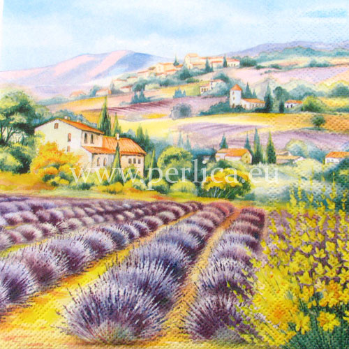 Salveta Lavander fields SP2