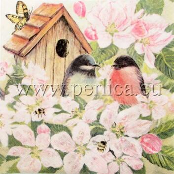 Salveta Birds and Blossom PT3