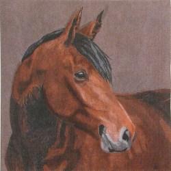 001sa-konj-2
