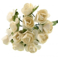 Cvijetici_50d7308bd6878.jpg