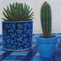Kaktusi-2