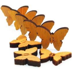Leptiri-narancasti