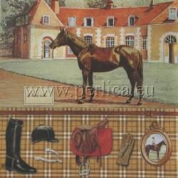 Salveta-Konji-1