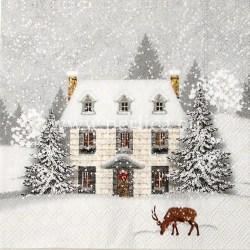 Salveta-Kuca-u-snijegu