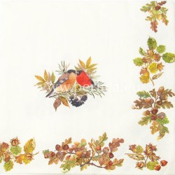 Salveta-jesen-s-pticama