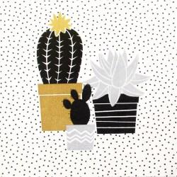 Salveta-kaktusi9