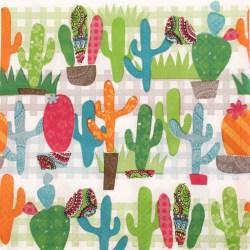 Salveta-kaktusi