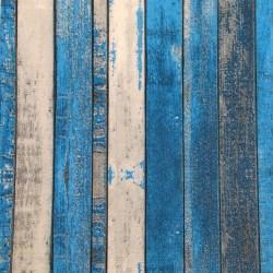 Salveta-prugasta-modra