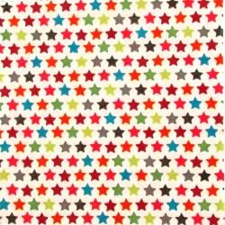 Salveta-zvijezdice