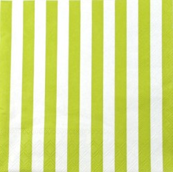 Salveta_Stripes__514e9cffdf6ba.jpg