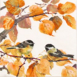 Salvete-jesen-i-sjenice