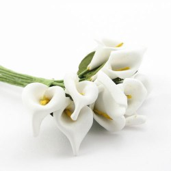 Cvijetici_kale___51f6a12f57ff8.jpg
