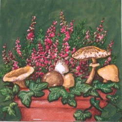 gljive-i-erika