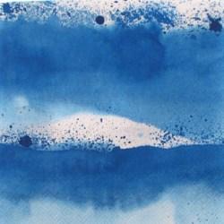 Salveta Luovi blue .jpg
