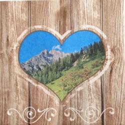 Salveta_Toscana_4f6b839a4da67.jpg